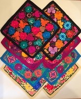 Image Embroidered Chiapas Pillow Covers