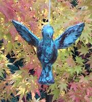 Image Fluttering Hummingbird